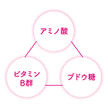 日本の醗酵滋養飲料